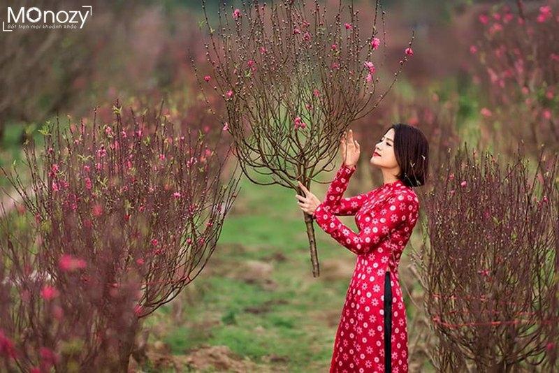 Chụp ngoại cảnh Tết 2019 đẹp tại vườn đào Nhật Tân